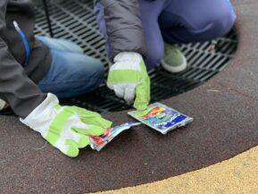 Rückblick: Umwelttag an der Grundschule am Priesterweg